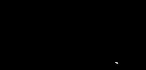 Marques-Logo - Wilkinson-Sword-Logo