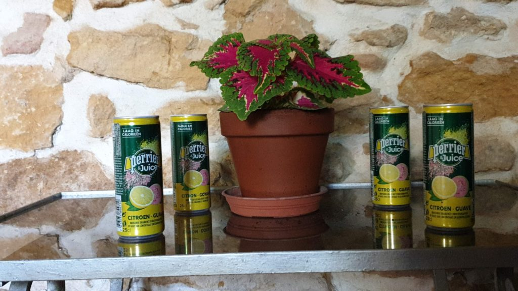 PERRIER®-&-Juice–Citron-&-Goyave - PERRIER®-Juice–Citron-Goyave-10